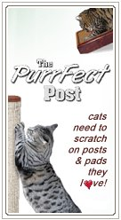 PurrFect Post
